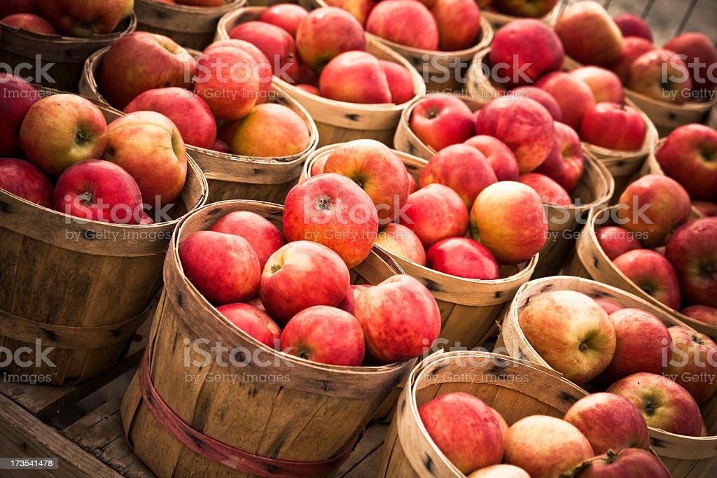 Numerosas cestas de maçã - foto de acervo