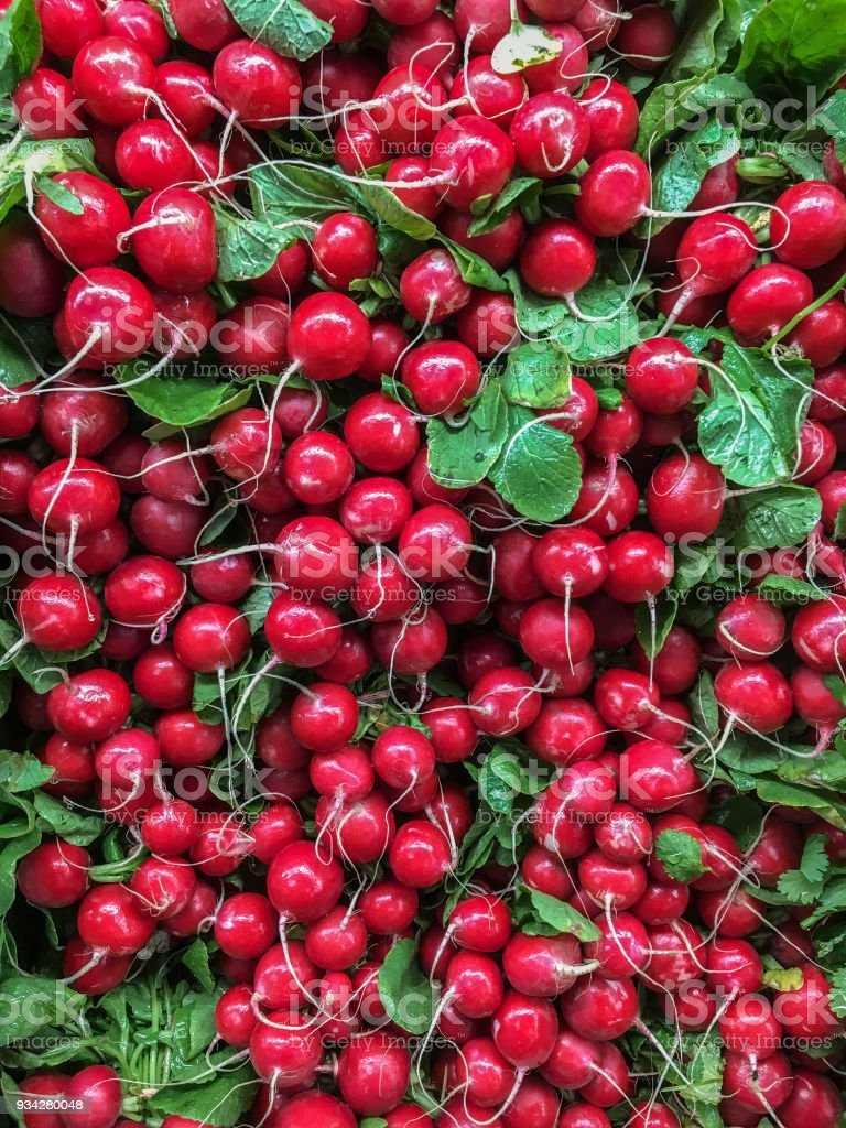 Numerous radishes stock photo