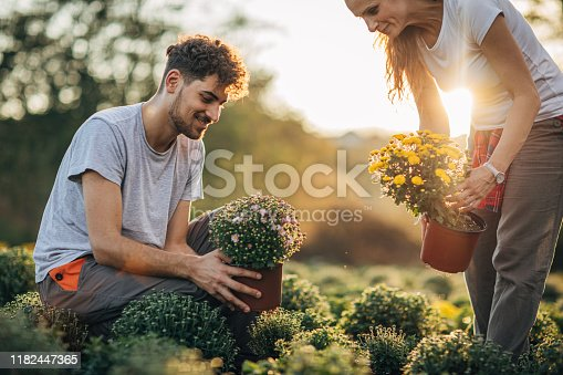 Two people, man and woman, mother and son working in garden center nursery flowers