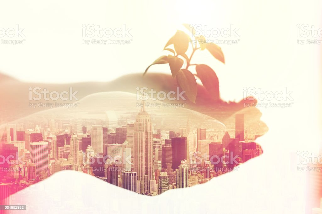 Nurturing her business in the big city stock photo