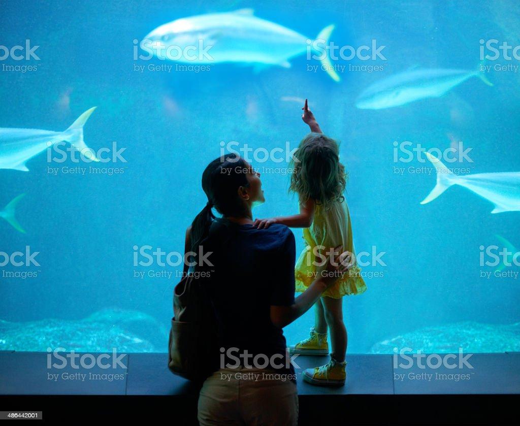 Nurturing her development stock photo
