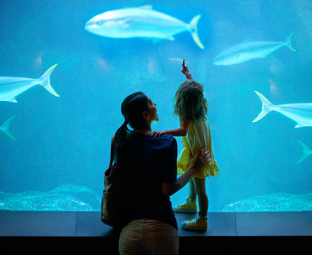 Nurturing her development Shot of a young family enjoying a day at the aquariumhttp://195.154.178.81/DATA/i_collage/pi/shoots/783341.jpg animal captivity building stock pictures, royalty-free photos & images