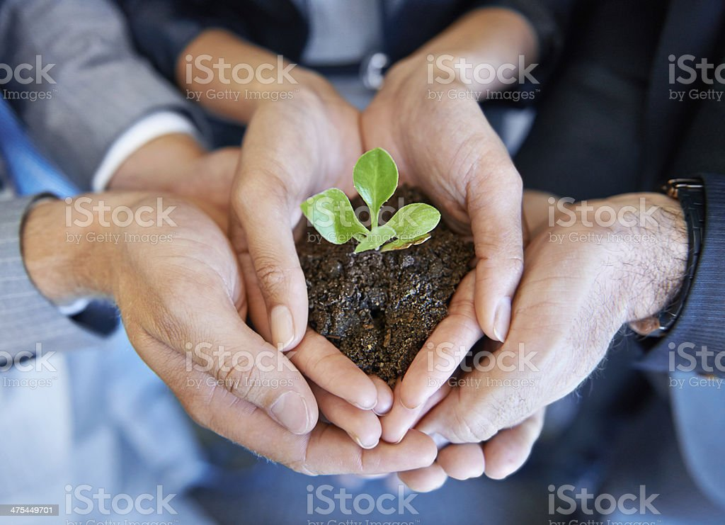 Nurturing the business together stock photo