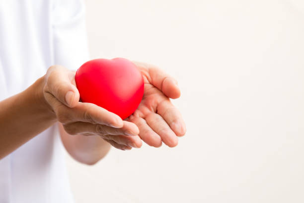 Nusre holding red heart in 2 hands; healthcare concept; love heart for valentine stock photo