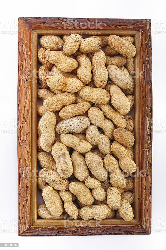 Nut Frame royalty-free stock photo