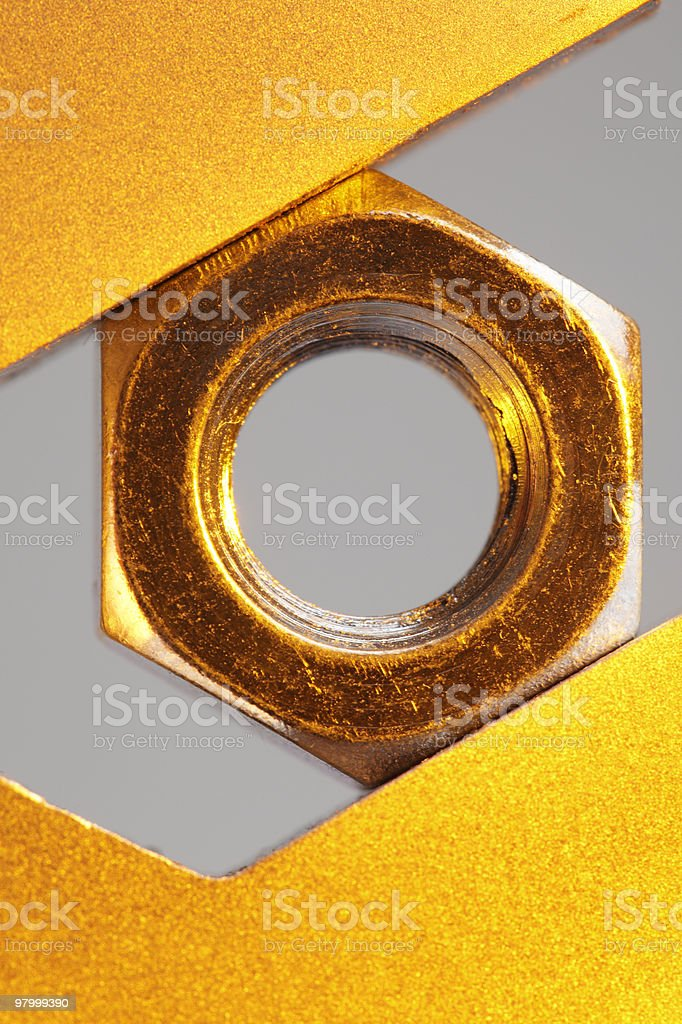 Nut, golden royalty free stockfoto