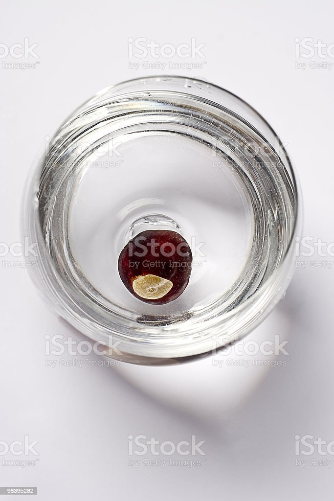 Nut in water royalty-free stock photo