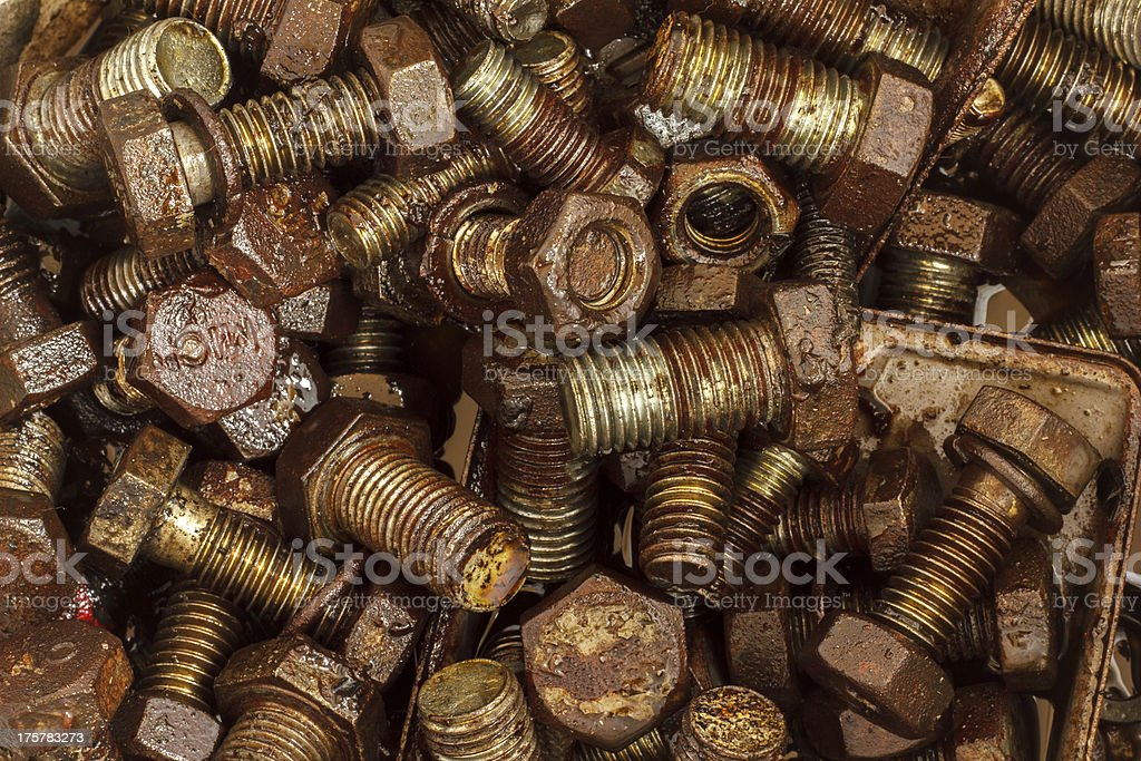 Nut old royalty-free stock photo
