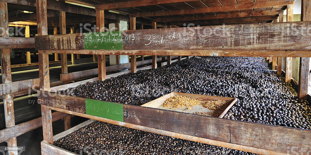 Nutmeg Factory In Gouyave Grenada royalty-free stock photo
