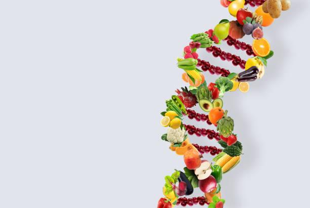 filamento de la dna del concepto de nutrigenética hecho con frutas y verduras saludables - investigación genética fotografías e imágenes de stock