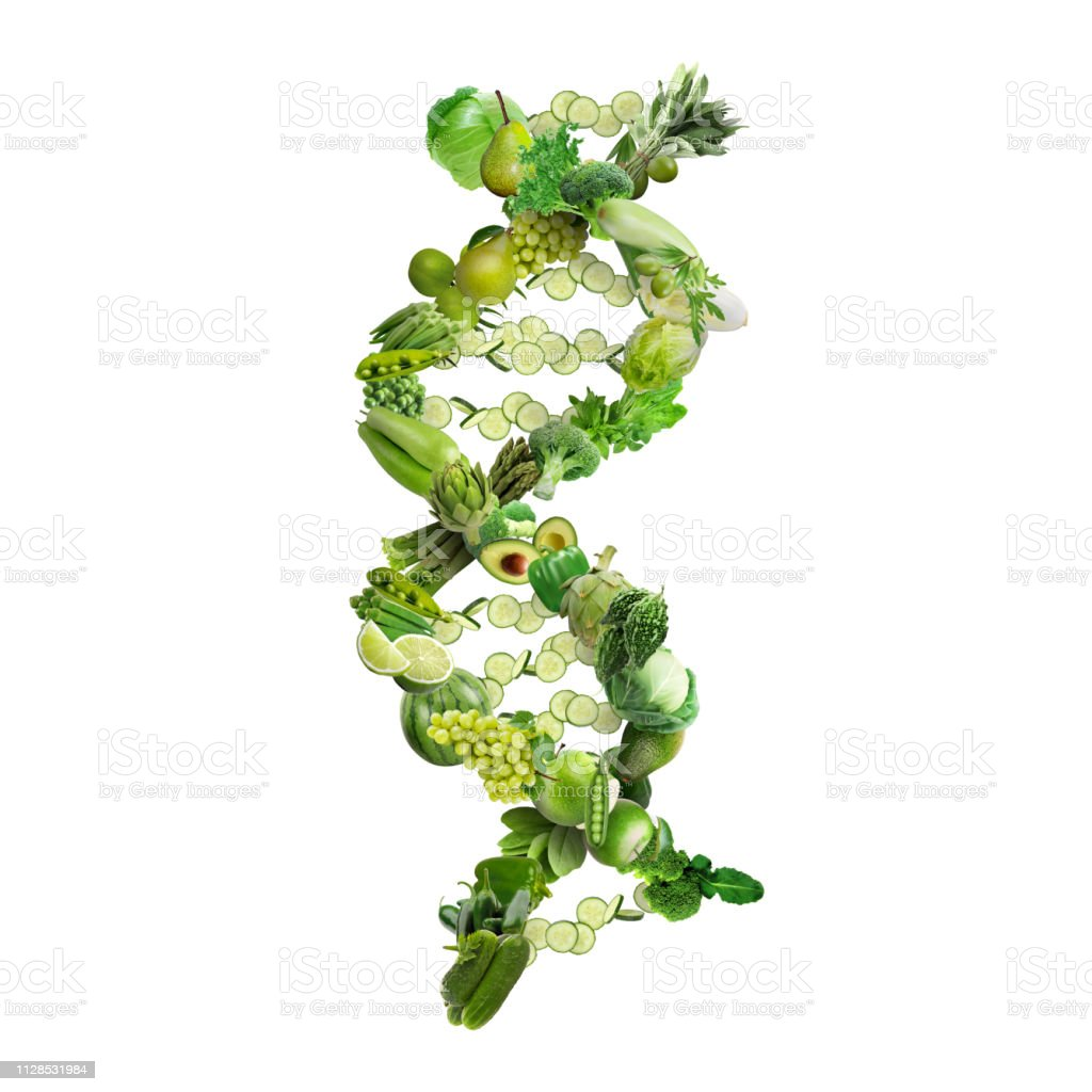 Nutrigenetics concept DNA strand made with healthy fresh vegetables and fruits stock photo