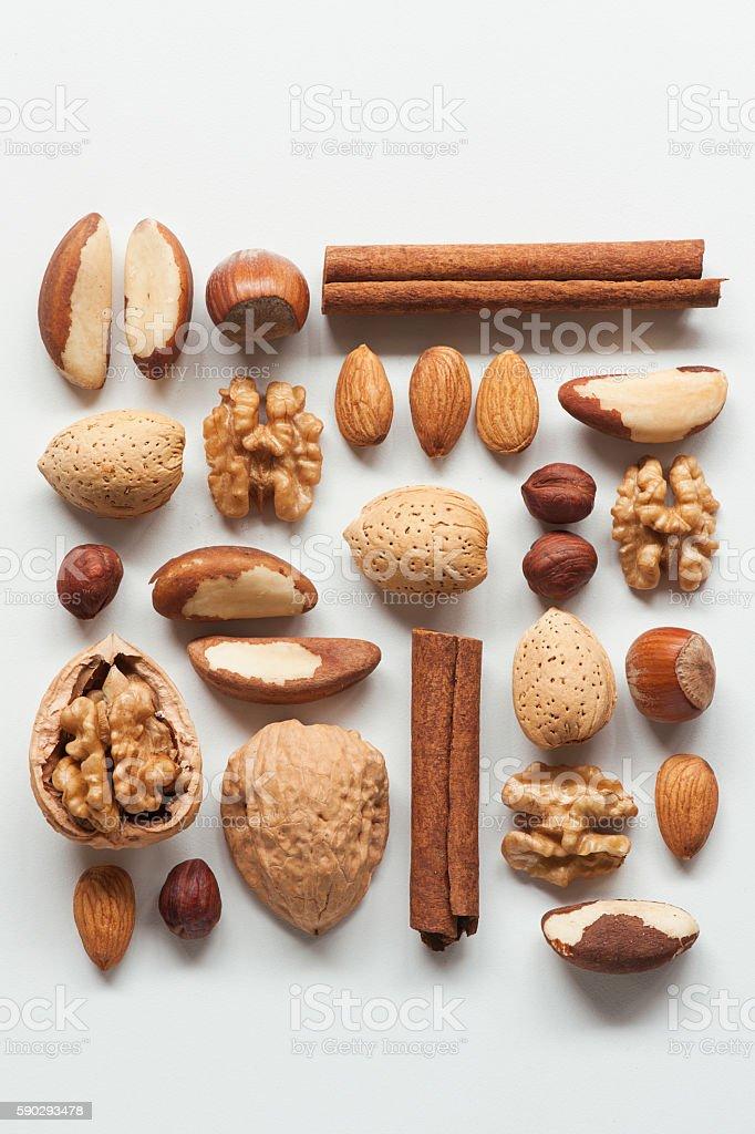 Nuts assortment royaltyfri bildbanksbilder