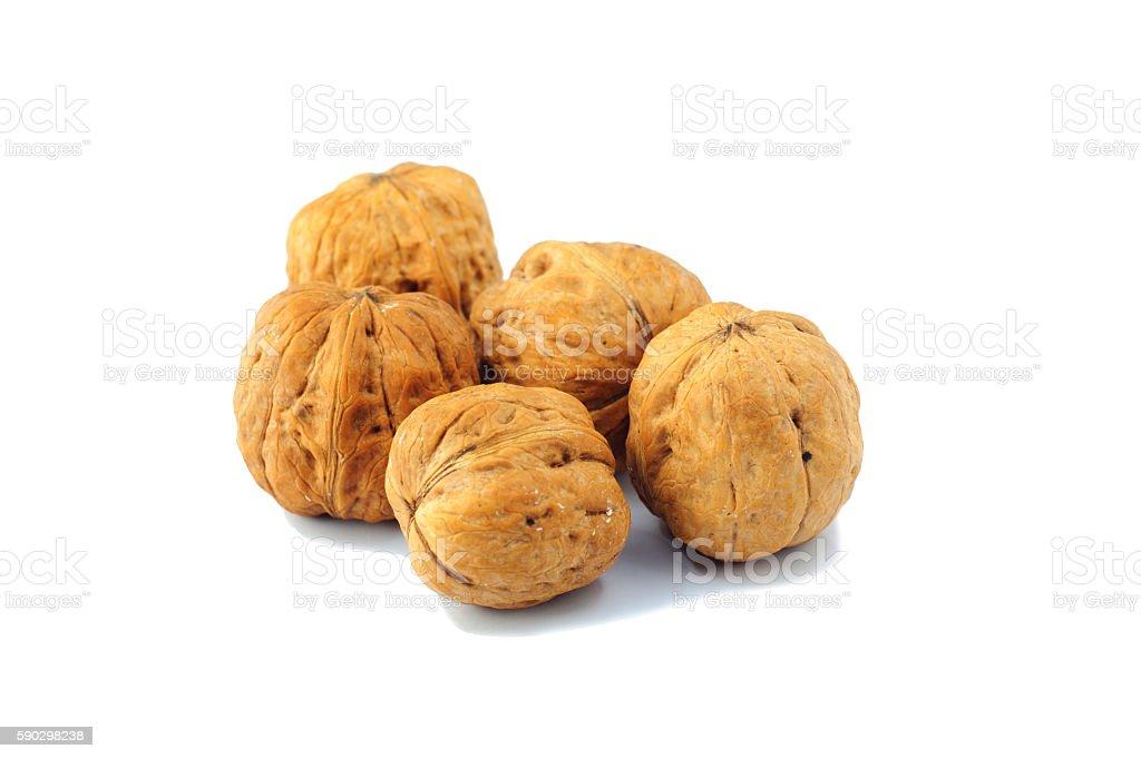 nuts on white background, macro nuts in the studio Стоковые фото Стоковая фотография