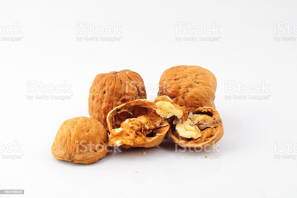nuts on white background, macro nuts in the studio royaltyfri bildbanksbilder