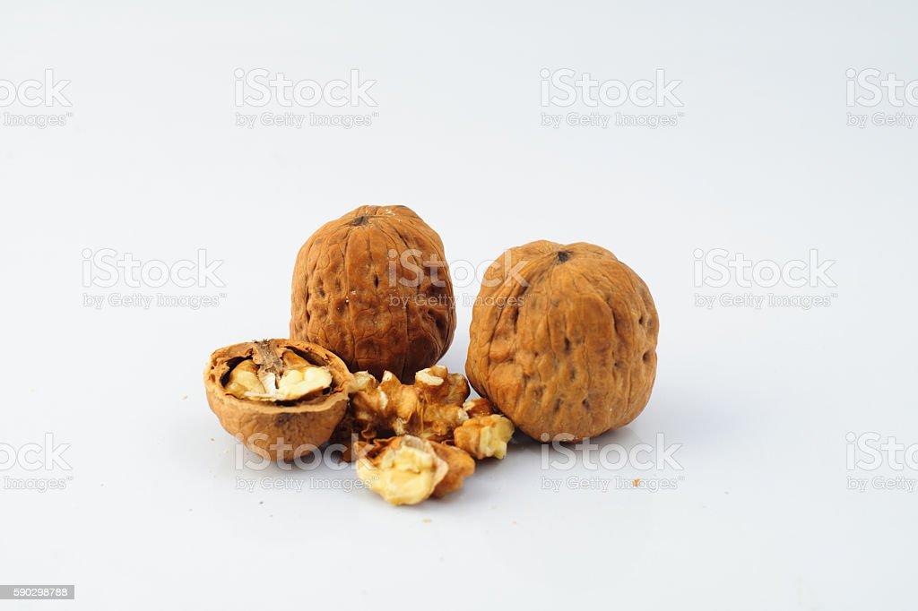 nuts on white background, macro nuts in the studio royaltyfri bildbanksbilder