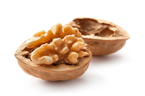 nuts: walnut - walnut stock photos and pictures