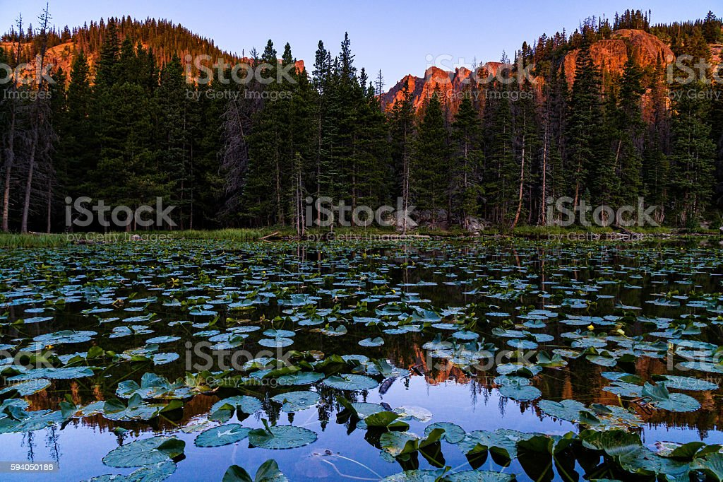 Nymph Lake Reflections of Hallett Peak stock photo