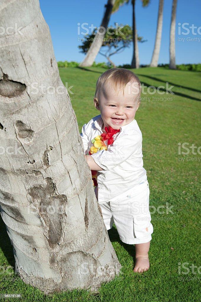 Oahu, Hawaii royalty-free stock photo