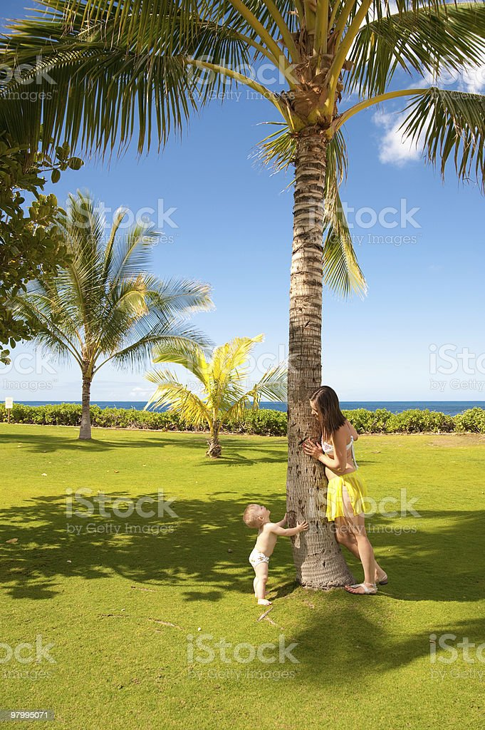 Oahu royalty-free stock photo