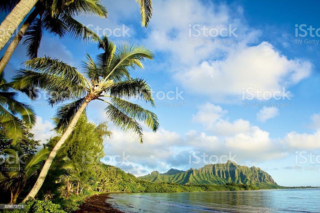 Oahu's Windward Coast stock photo