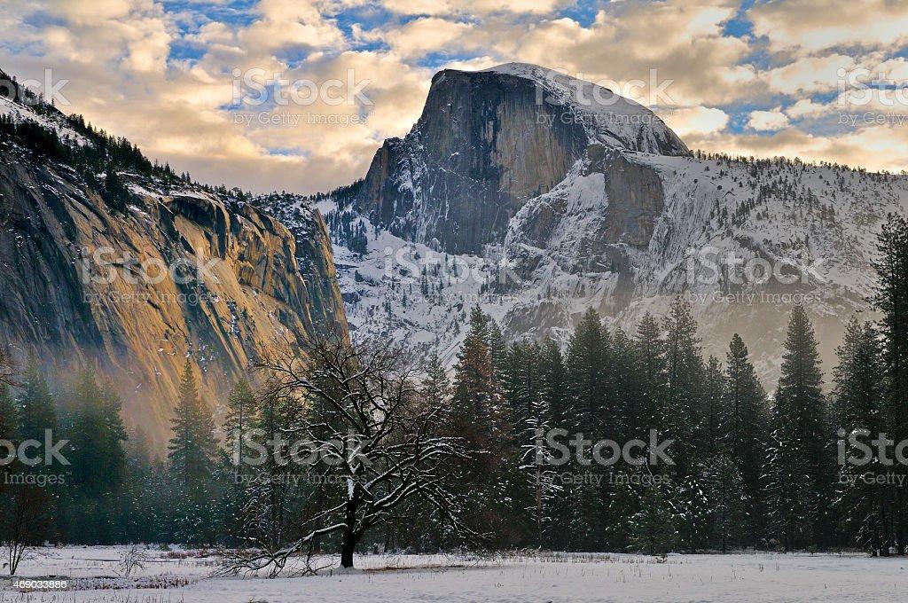 Oak and Half Dome in winter stock photo