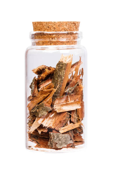 Oak bark in a bottle with cork stopper for medical use stock photo