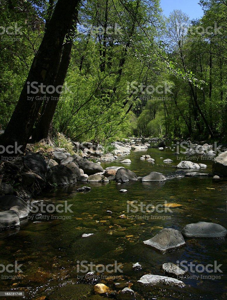 Oak Creek Canyon Sedona Arizona royalty-free stock photo