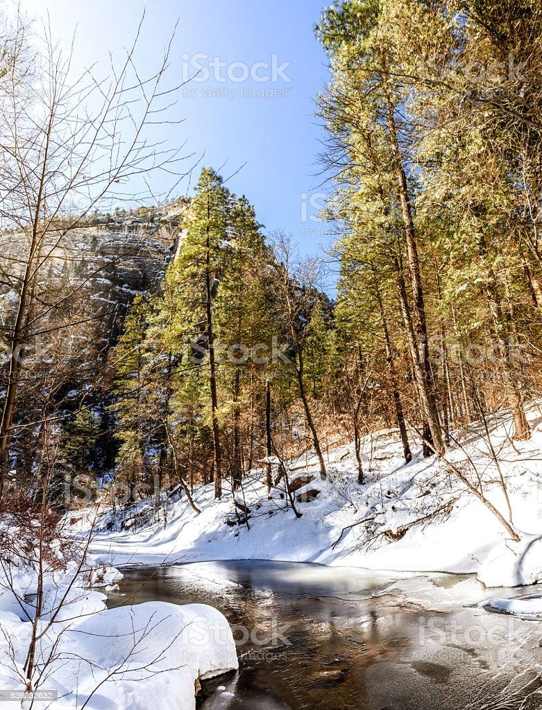 Oak Creek no inverno foto royalty-free