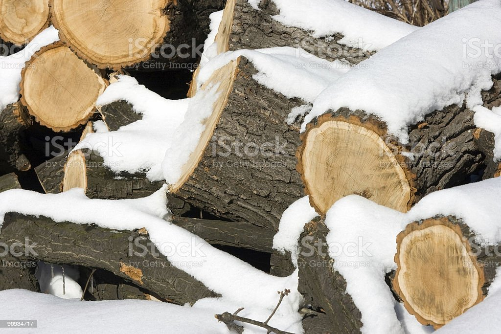 Oak fire wood royalty-free stock photo