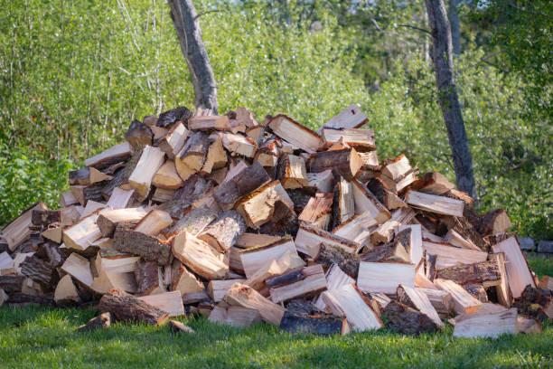 Oak Firewood Logs Split in a pile stock photo