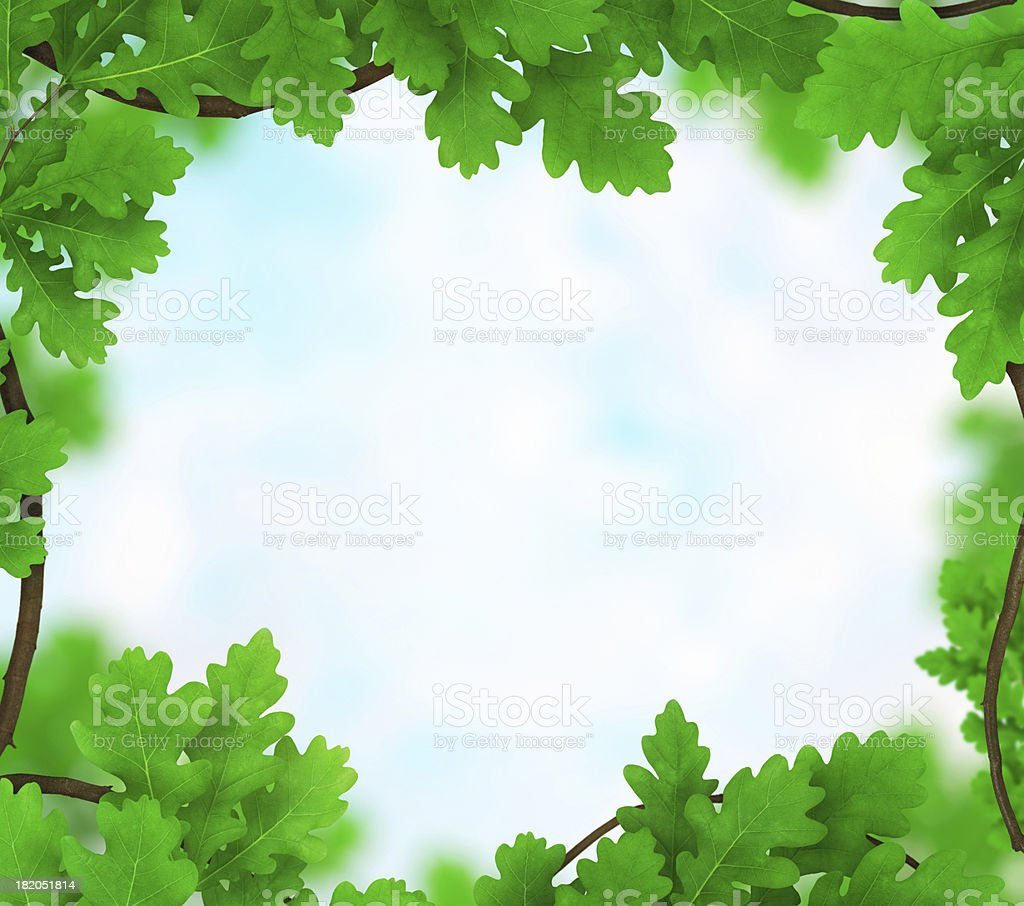 Oak Frame royalty-free stock photo