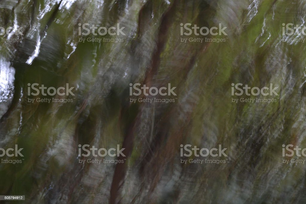 oak leaves in the style of expressionism stock photo