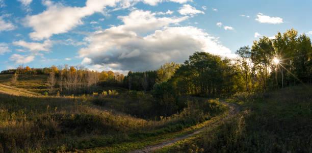 oak ridges moraine in sunrise in ontario, canada - wildlife conservation stock photos and pictures