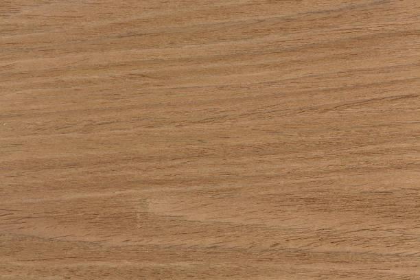 eiche textur auf makro, natürlichen hintergrund - walnussholz stock-fotos und bilder
