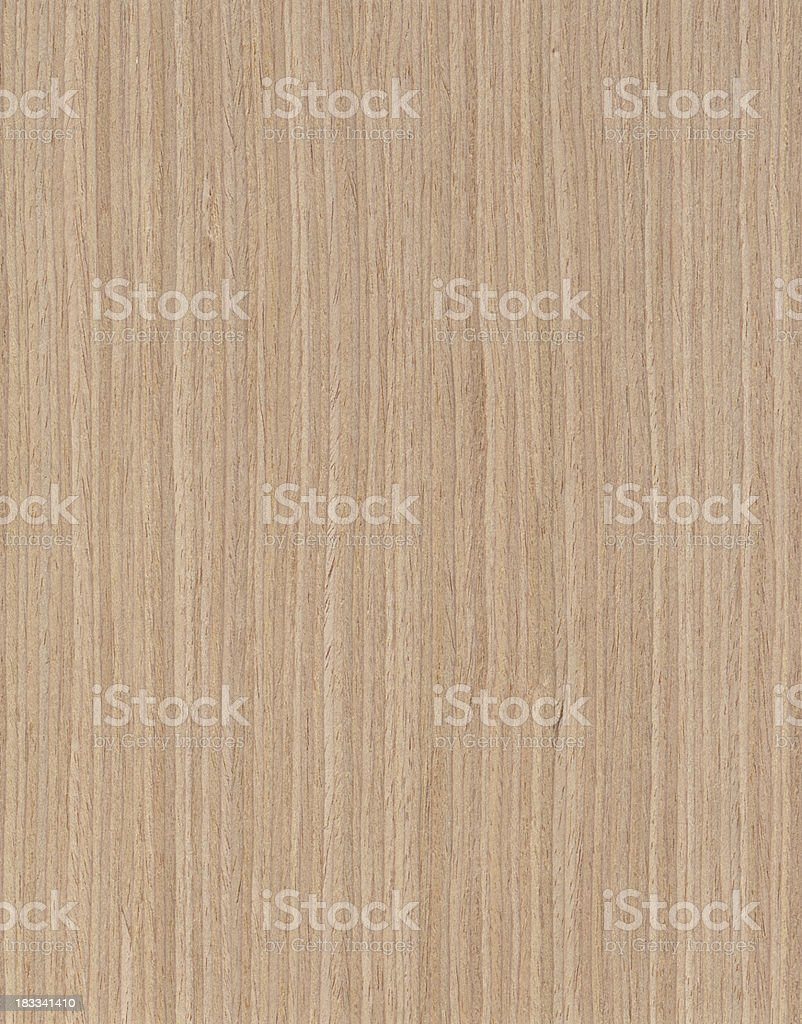 Oak Tree Background stock photo
