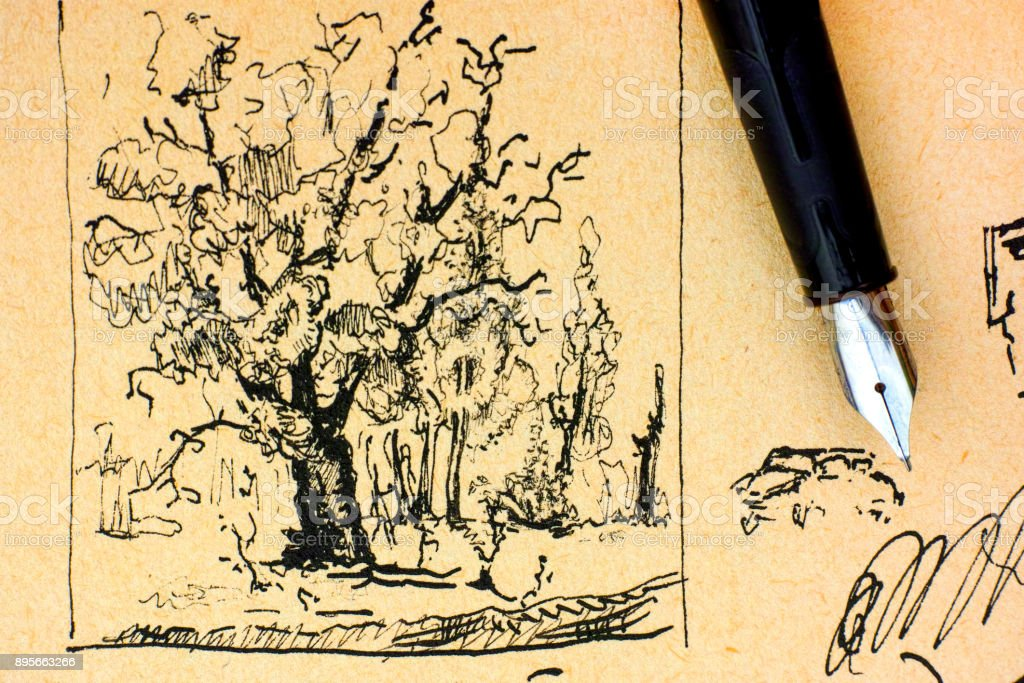 Oak tree drawing by ink with fountain pen. stock photo