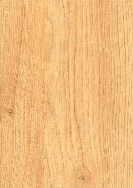 oak wood grain stock photo