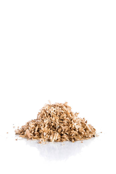Oak wood shavings on white background, shadows and reflections, wood waste, space for text stock photo