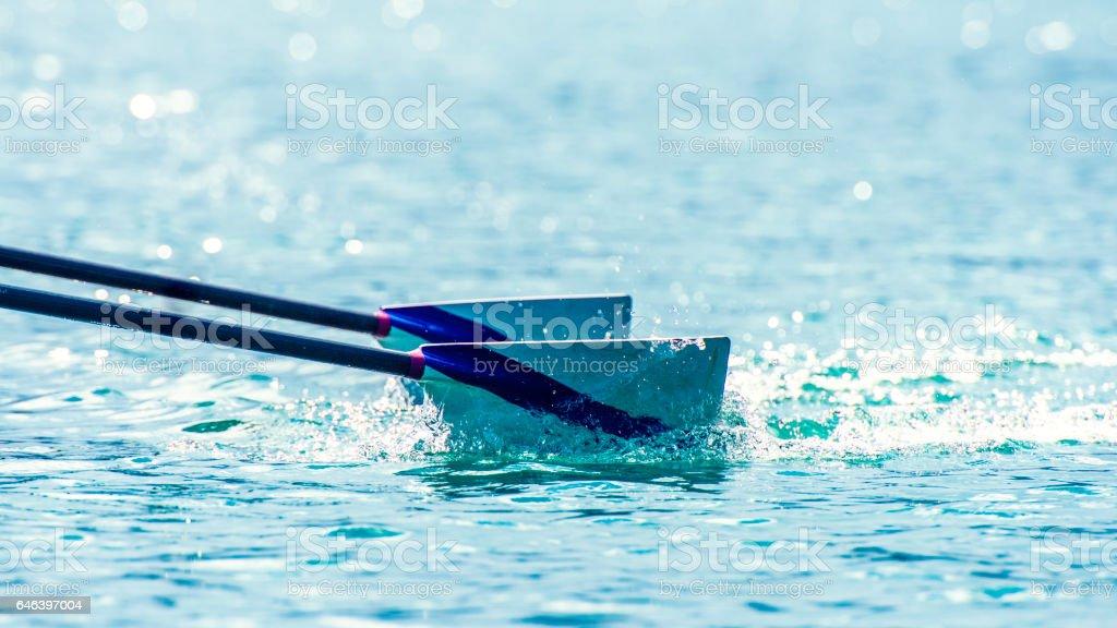 Oars in river stock photo