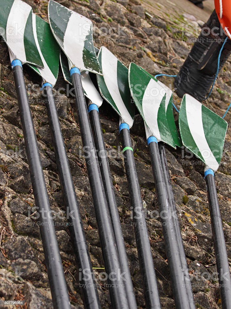 Oars laid out on a quayside during a regatta, UK stock photo