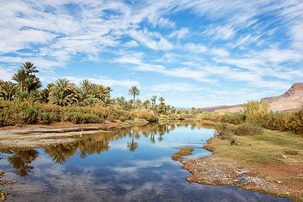 Oasis and river with cloudy blue sky water reflections. stock photo