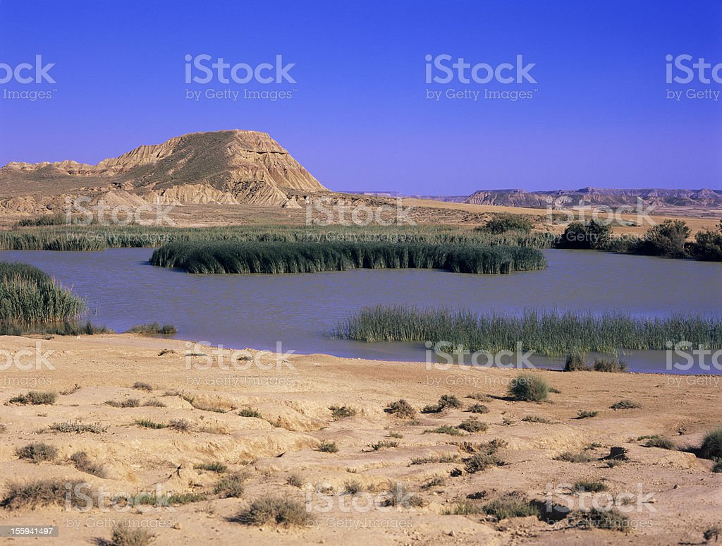 oasis in Bardenas Reales Spain stock photo