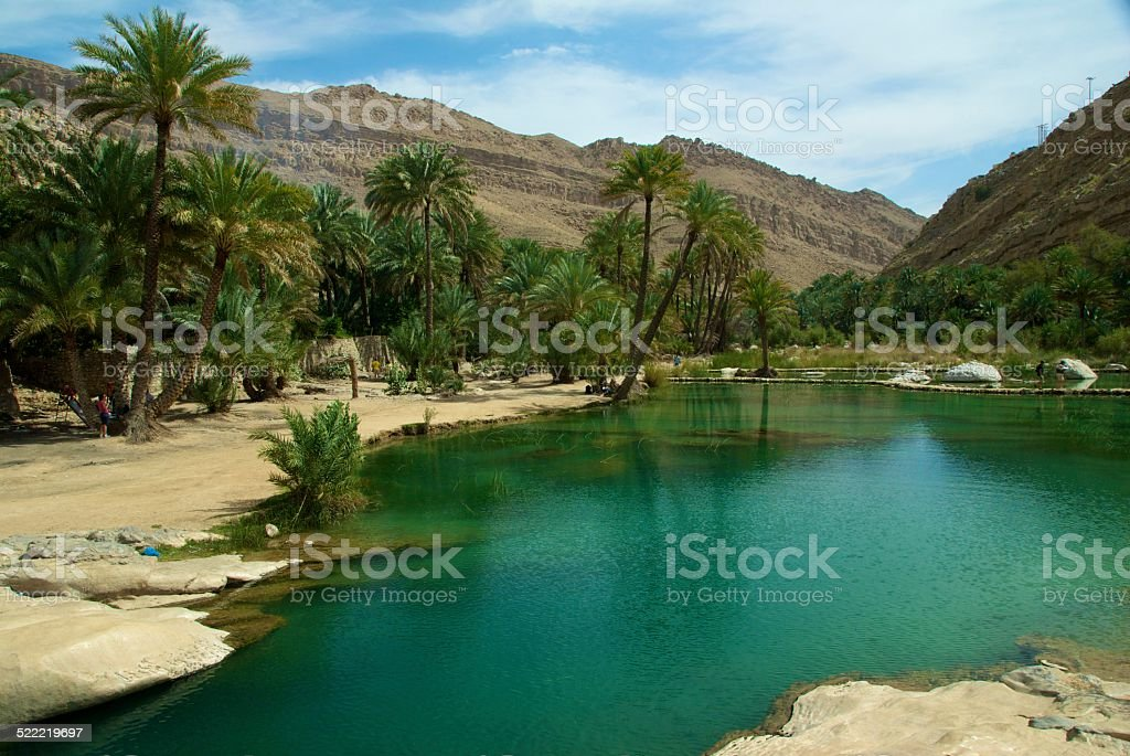 oasis in Oman stock photo