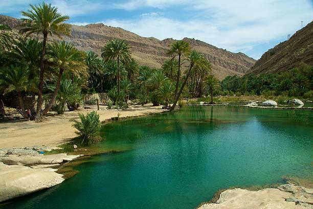 оазис в оман - oman стоковые фото и изображения