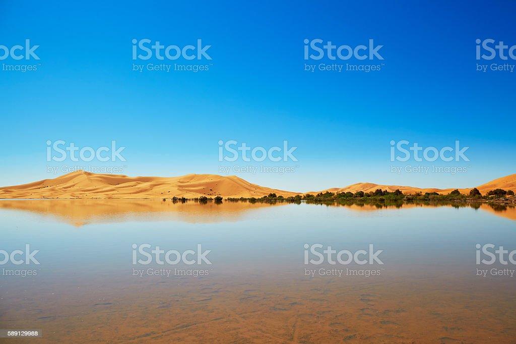 Oasis lake in Sahara desert, Merzouga, Africa stock photo