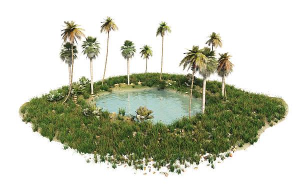 Oasis picture id157190423?b=1&k=6&m=157190423&s=612x612&w=0&h=lznjvszq z3lgvm puwlekxdcls5yuaylwgenu0twkg=