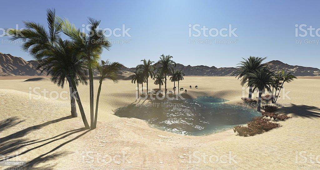 Oasis stock photo