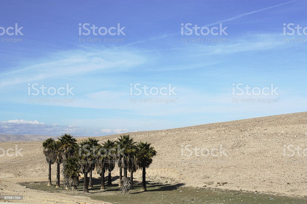 oasis royalty-free stock photo