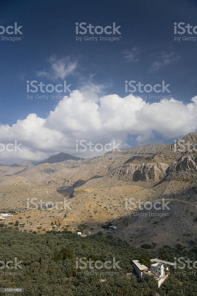 Oasis Ras Al Khaimah United Arab Emirates royalty-free stock photo
