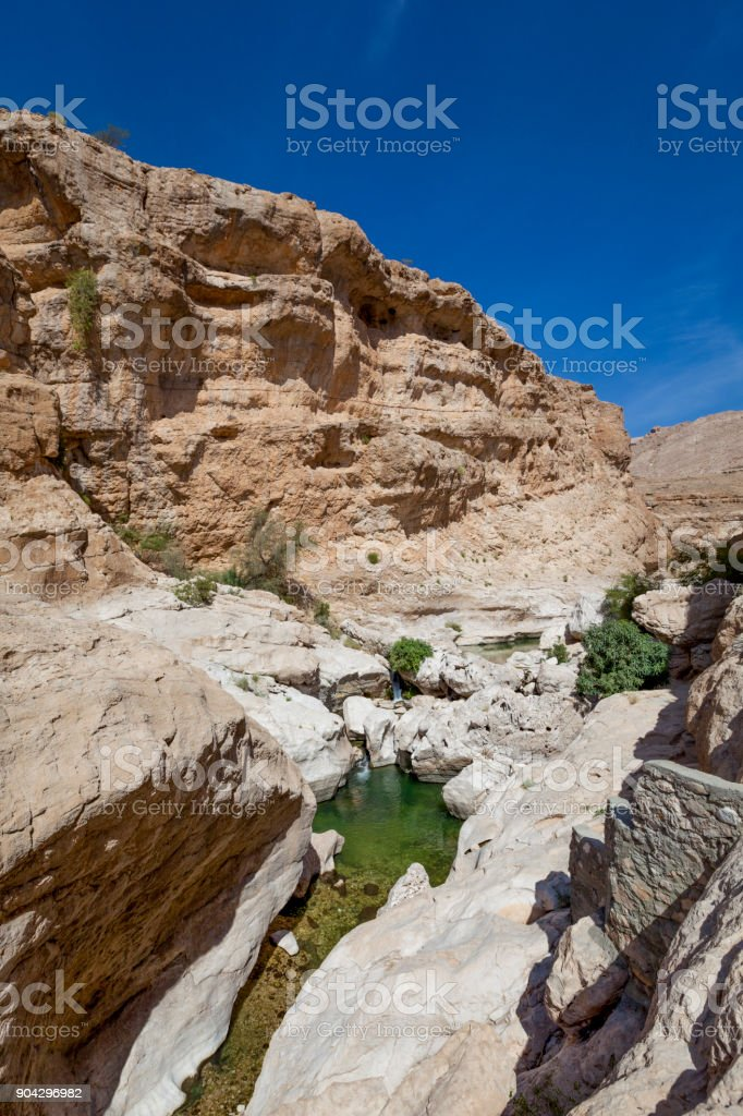 oasis wadi bani khalid, ash sharqiyah region, oman stock photo